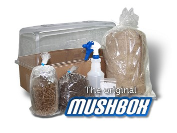 The Mushbox Casing Kit