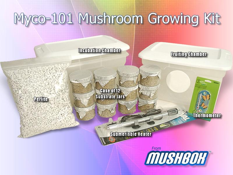 The Myco101 Grow Kit